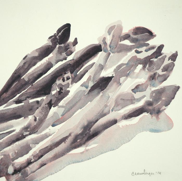 Asparagus, 2014, watercolor