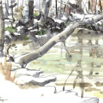 Kennedy Park Pond, 2013, Watercolor