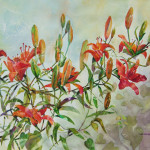 Tiger Lilies, Watercolor