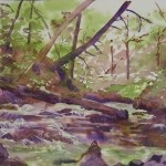 Yokum Brook Cascades, 2013, Watercolor
