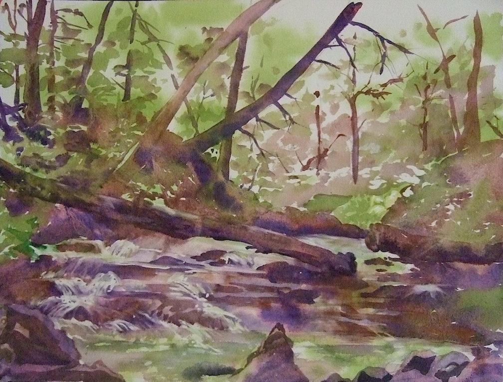 Yokum Brook Cascades, 2013, Watercolor