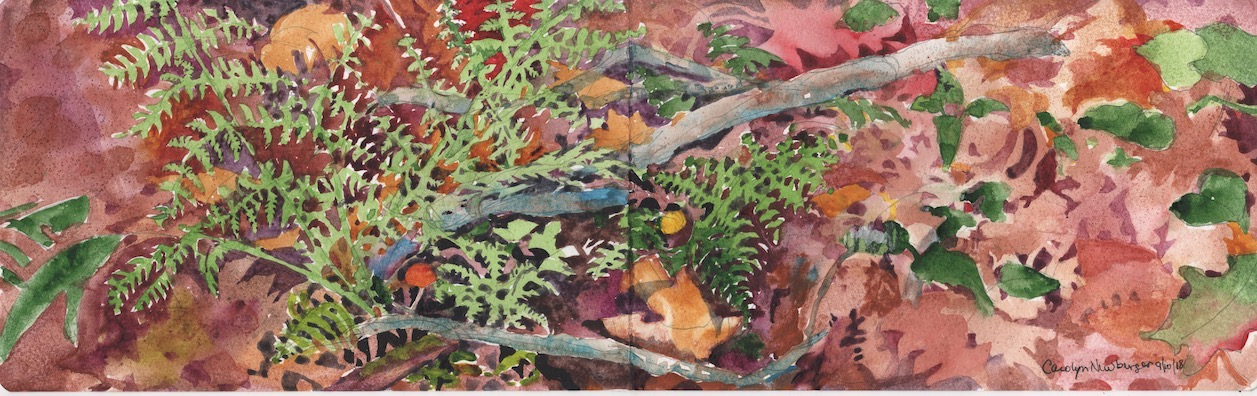 Autumn Ferns with Red and Yellow Mushrooms