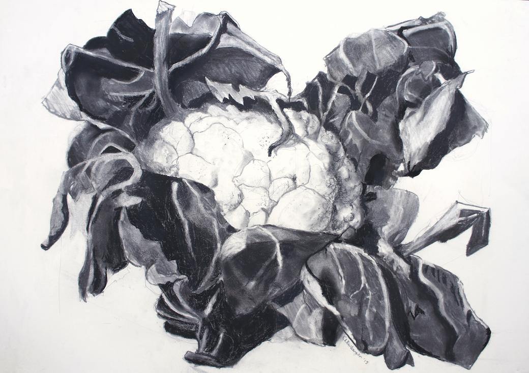 Brassica 1